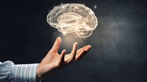 """脑研究有多难?就像""""拉着自己的头发使自己脱离地球"""",体会一下"""