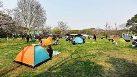 """""""五一""""期间申城公园共接待游客271.74万人次"""