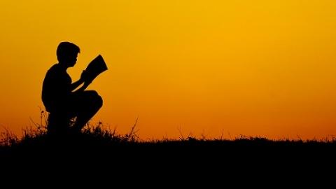 """读书、读城、读温度……新民App今起刊登""""阅读者""""征文"""