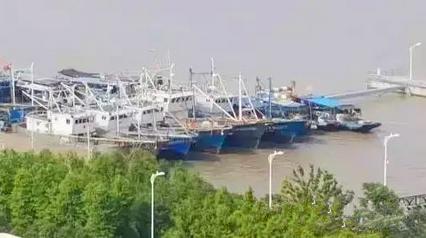 横沙芦潮港将建成特色渔港经济区