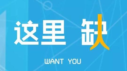 5月5日青浦大型招聘会,60多家企业等你来