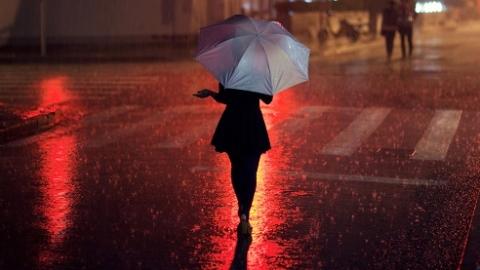 注意雷雨!本周末沪普通高中学业水平等级考考生出行请带好雨具