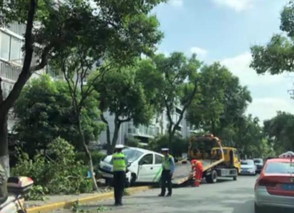 共享汽车冲上嘉定人行道 撞断两棵行道树一个垃圾桶一块指示牌