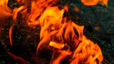 张东路一小区楼道内电瓶车起火燃烧 幸无人员伤亡