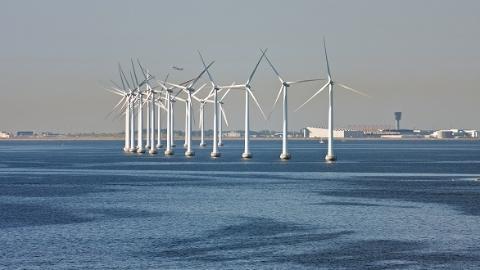 """风力""""混搭""""海流来发电  上海海事大学初步建成海流发电实验平台"""