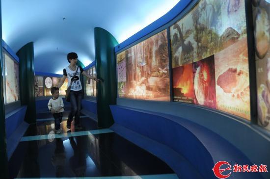 上海昆虫博物馆-杨建正.jpg