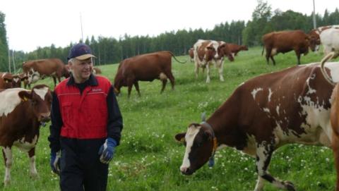 """芬兰""""农夫部长""""莱佩亲自邀您""""芬享美食"""""""