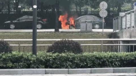 """路边停车位上一轿车突然起火 """"烤焦""""了行道树"""