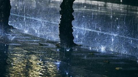 上海防汛指挥部发布提示:今明需防暴雨与大风