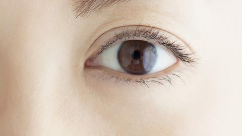 """""""废""""透镜再创新利用 申城医院为角膜病患者重获光明"""