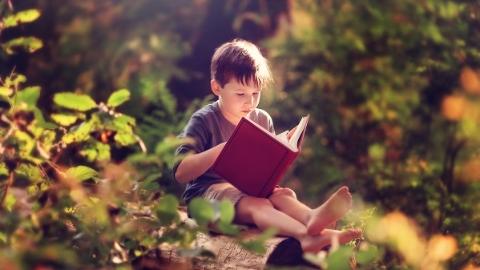 阅读者 | 今天是六一!孩子眼中的书海世界是啥模样?
