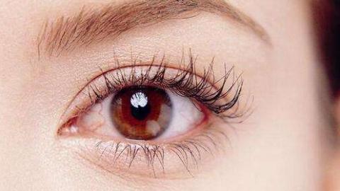 黄斑病成中老年致盲主要眼病 眼耳鼻喉科医院成立患者俱乐部