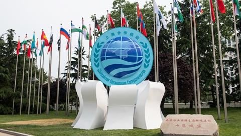 专家论坛|上合组织青岛峰会:在转型中发声