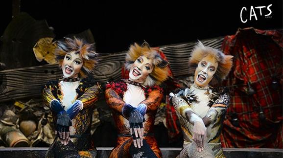 时隔十多年,经典原版音乐剧《猫》又来上海了!