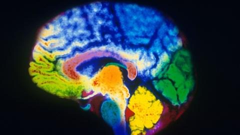 """""""超级大脑""""来临,脑科学与类脑智能间到底有啥关系?"""