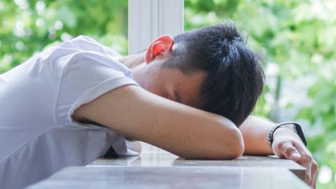 主动打个盹,睡睡更健康