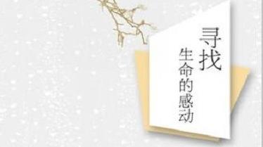 冰心散文奖揭晓 上海作家安谅散文成获奖作品之一