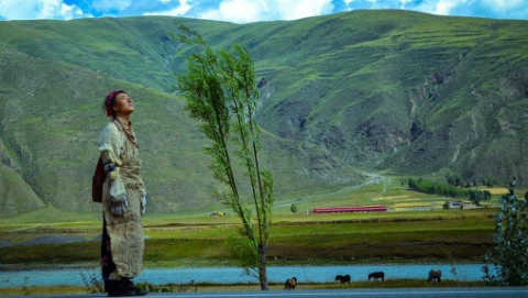 金爵奖入围影片《阿拉姜色》:1900公里的朝圣,终点是成全