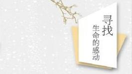 冰心散文奖近日揭晓 《寻找生命的感动》获奖