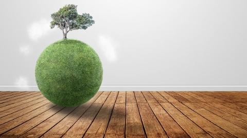上纽大:中国二氧化硫减排卓有成效 环境治理取得进展