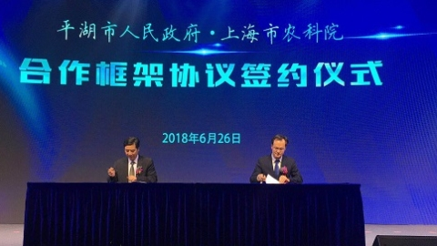 上海农科院与平湖市人民政府签订科技合作协议 推动乡村振兴