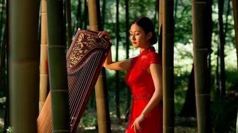 海外华人志 | 吴梦梦:从中国到英国, 她带着两千多岁的它一路前行