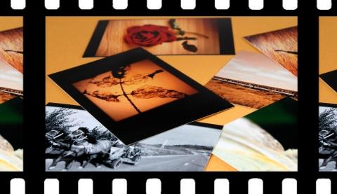 《战狼2》《红海行动》《寻梦环游记》……闵行百余场免费电影等你来看