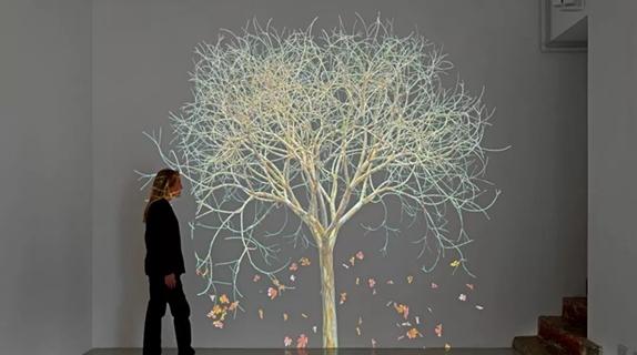 家门口就能欣赏国际作品,共享画廊是怎么一种艺术新玩法?