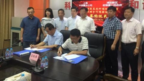 新时代新作为新篇章丨大调研催生华东最大蓖麻基地将在浦东老港镇诞生