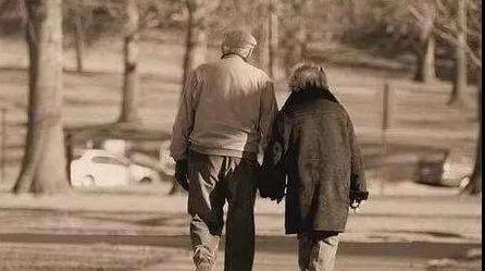 牵着你的手,我愿意陪你到老