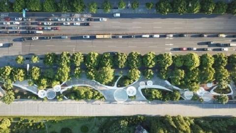 """绿化景致道路全方位美颜 """"东方的香榭丽舍大街""""更迷人了"""