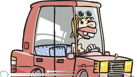 """驾照被吊销后照样上路 """"戏精""""驾驶员还报假案称驾照被人冒用"""