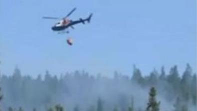 瑞典连月高温 森林多处起火