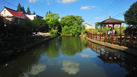 新时代新作为新篇章丨沪郊乡村打造安居乐业美丽家园
