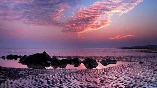 十日谈   横沙岛,它就在上海