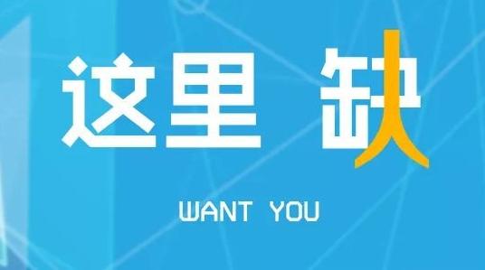 闵行区招200余名劳动合同制员工,具体要求已公布