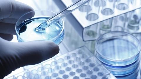 辉瑞将继续向瀚晖制药转移指定产品的技术和指定产品