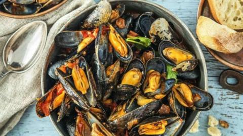 荷兰青口节重磅来袭!逛吃海鲜盛宴+出海看烟火秘笈