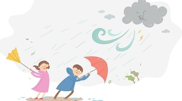 台风来袭 上海市小学生爱心暑托班和托幼机构明日暂停一天
