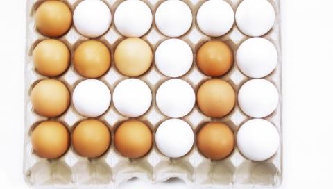 这两家超市销售的鸡蛋不合格,你买过没有?