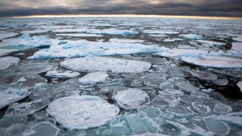 """今日焦点   气候威胁真的来了?""""最古老的""""格陵兰海冰在融化"""