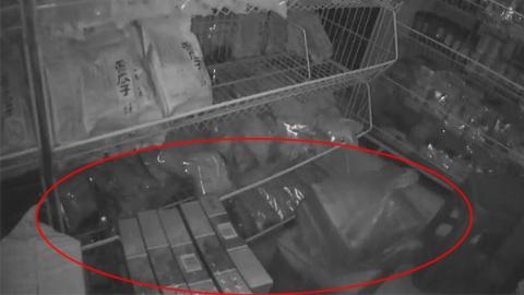 杂货店为何凌晨2时搬运卷烟? 青浦警方成功查获一起非法经营案