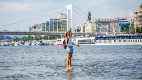 """高温致多瑙河水位下降 匈牙利民众体验""""水上漂"""""""