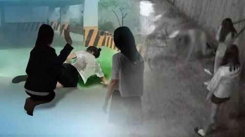 韩国小学生日子不好过——校园暴力低龄化