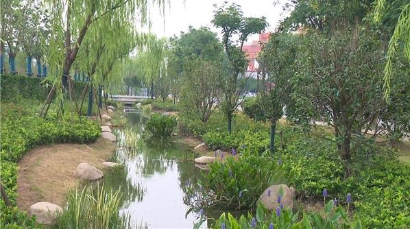 上海第1座!嘉定新建了一个超特别的公园