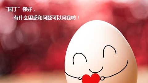 """""""园丁""""的心理健康谁来呵护?上海有条24小时年中无休的教师心理健康热线一直在线!"""