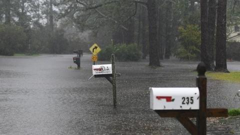 """飓风""""弗洛伦斯""""致美国5人死亡"""