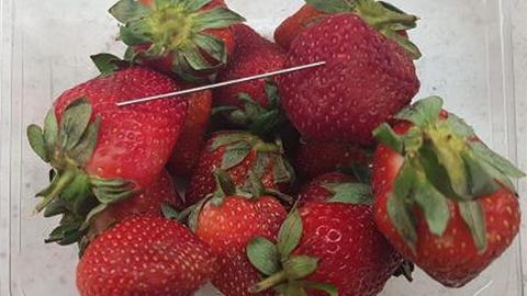 """莓里藏针!澳洲""""针莓""""侵入新西兰各大超市"""