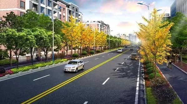 @张江的小伙伴,科苑路(龙东大道-碧波路)将改建啦