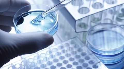 癌症患者的福音!诺华授权西比曼公司生产细胞治疗药物